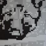 K1600_Pixelbilder